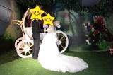 Wedding - 星雪