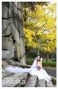 日本婚照总动员