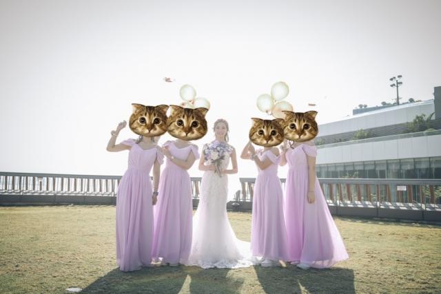 K❤️M💍 ~ 婚後review ~ 訂造雪紡姊妹裙 💃🏼(多色,高質,快手起貨😍)