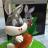 BunnyQueen
